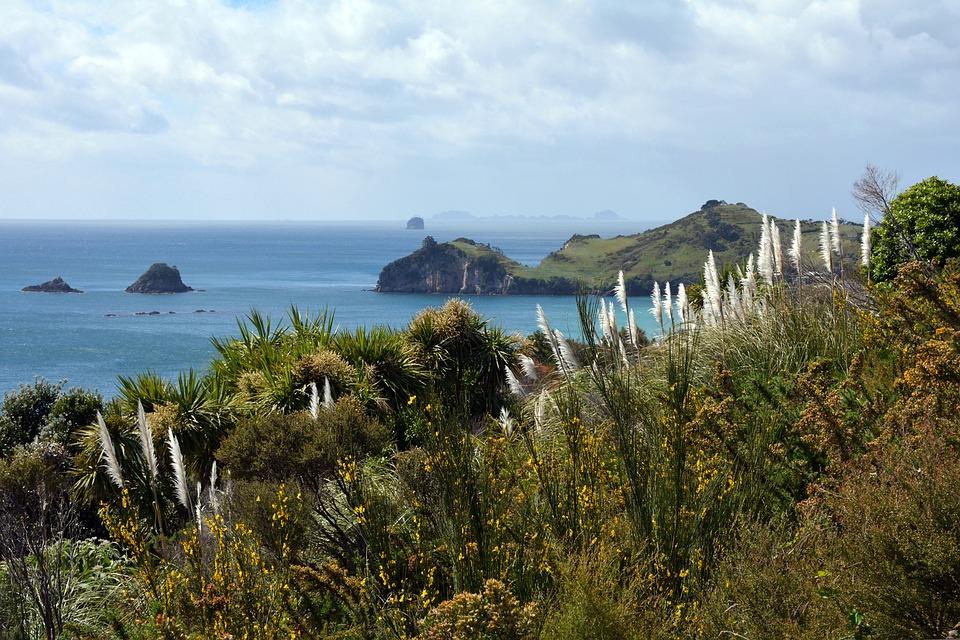 Apprécier la péninsule du Coromandel lors d'un séjour en Nouvelle-Zélande